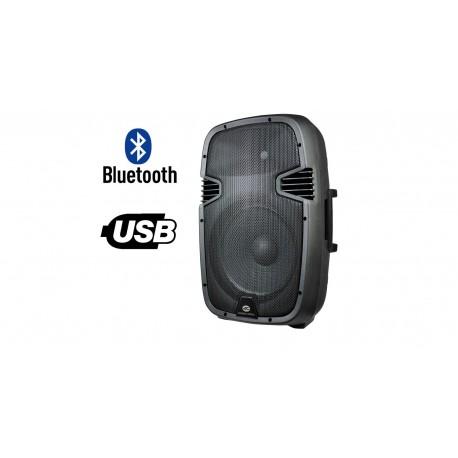 ACOUSTIC CONTROL LC12 AMP USB BT